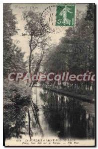 Old Postcard From Morlaix Saint Pol de Leon Penz undergrowth on the river
