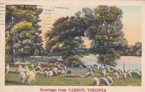 Virginia Harrisonburg Carson Greetings From Carson 1941