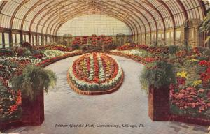 Chicago Illinois~Garfield Park Conservatory Interior~Flower Garden Center~1908