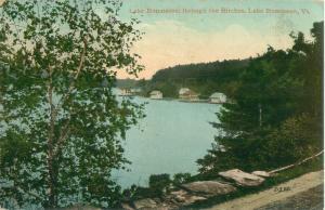 Lake Bomoseen, Vermont, Lake Bomoseen Through the Birches; Houses 1911 Postcard