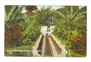 Scene In Westlake Park, Los Angeles, California, 1900-1910s