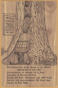 Piercy, Calif., World Famous Tree House -