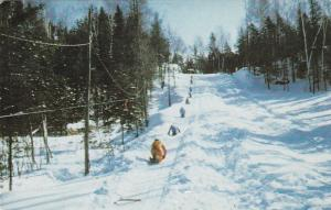 CHARTSEY, Quebec,  PU-1983 ; Camp Boute-en-train, Sleighing, Winter Scene