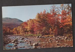 Rocky Riverbed & Forest Scene, ME - Used 1955
