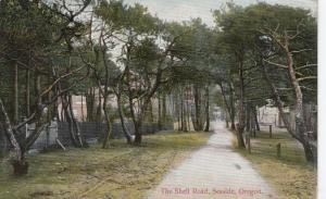 SEASIDE , Oregon , PU-1910 ; The Shell Road