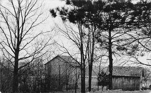 Quincy Michigan~Nettie Camp's Pear & Plums & Grape Vines~Barn~1909 Bovee RPPC