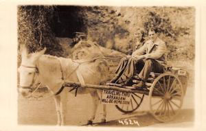 Traveling Through Arkansas~Couple Pose on Donkey Cart~1940 License Plate~RPPC
