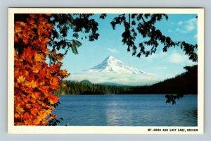 Lost Lake OR, Mount Hood, Fall Foliage, Chrome Oregon Postcard