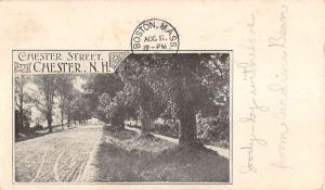 Chester New Hampshire Scenic Street View Antique Postcard K96703