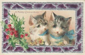 CHRISTMAS, 1900-10s; Two kittens with blue ribbons, Holly