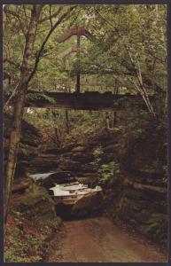 Duck,Red Bird Gorge,Wisconsin Dells,WI Postcard
