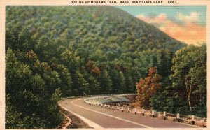 Looking Up Mohawk Trail,MA Near State Camp