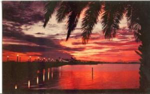 Sunset over Clearwater Bay, Florida, unused Postcard