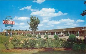 Poplar Bluff Missouri~Shaped Shrubs~Flower Plants @ Del Rex Motel 1960s