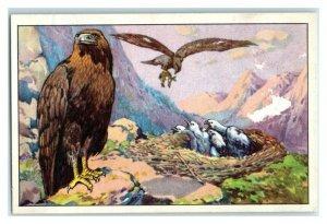 Eagle, German Birds of Prey, Echte Wagner Trade Card *VT31T