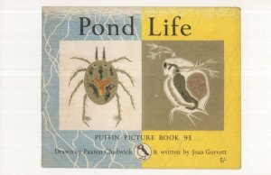 Pond Life 1964 Puffin Picture Book Postcard