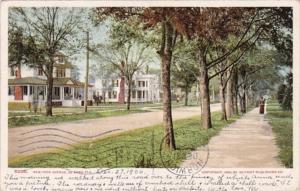 Florida Deland New York Avenue 1906 Detroit Publishing