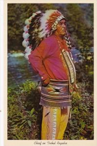 Indian Chief In Tribal Regalia