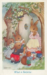 AS; Rabbit Family , 1930-50s