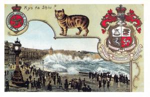 Postcard Nostalgia DOUGLAS Isle Of Man c1910 Reproduction Card