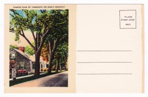1930-1945 Famous Elms of Yarmouth On King's Highway MA Mass Linen Antique