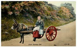 15007    Irish Woman  1910  Woman riding on donkey cart, Pail of Milk