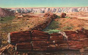 Petrified Forest, AZ, Twin Sisters in Second Forest, 1935 Vintage Postcard g1536