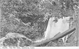 Salisbury Connecticut~The Mill Falls~Long Tree Over~1910 B&W Postcard