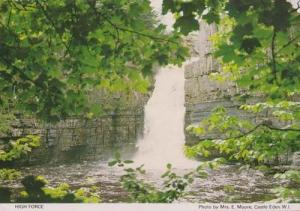 High Force Waterfall Castle Eden Durham Rare Womens Institute Photo Postcard