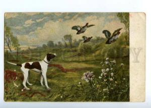 151029 HUNT Dog POINTER & Perdix Vintage Colorful PC
