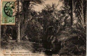 CPA AK Oasis du Sangalcam - prés de Rufisque SENEGAL (778428)