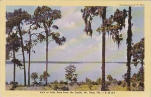 Florida Mount Dora View Of Lake Dora From The Castle Dexter Press