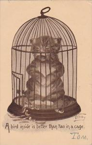 Humour Cat In Bird Cage Signed Colby 1911
