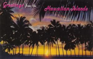 Hawaii Greetings Sunset Through The Palms