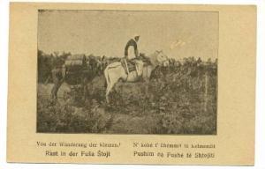 Albania Postcard Highland Horse Rider , 00-10s