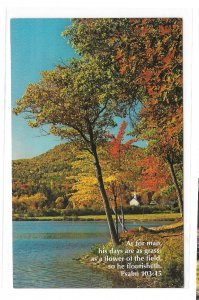 Religion Bible Verse Psalm 103 Crystal Lake NH Eaton Center Christian Postcard