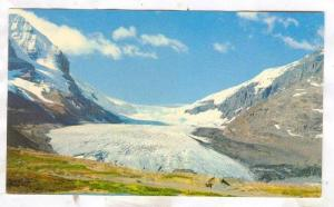 The Columbia Icefields, Canadian Rockies, Canada, 40-60s