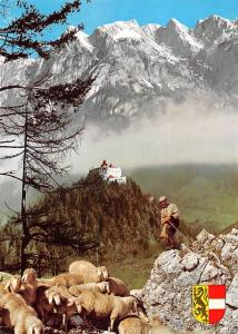 Burg Hohenwerfen gegen das Tennengebirge Castle Chateau Sheeps Mountain