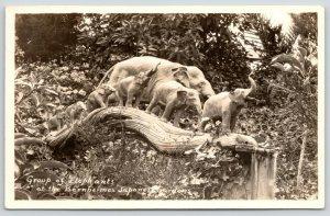 Los Angeles CA~Bernheimer Japanese Gardens~Elephants Trunks Up~Down~1930s RPPC