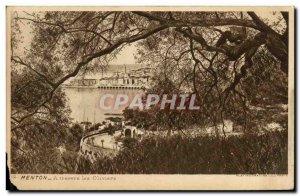 Old Postcard Menton through the Olives