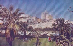 California Long Beach Looking Eastward From Auditorium Park