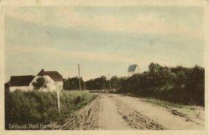 denmark, TOFTLUND, Parti fra Kirken (1910s) Postcard