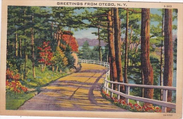 New York Greetings From Otego 1941 Curteich