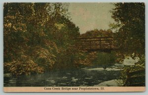 Prophetstown Illinois~Wagon Bridge in Early Autumn View of Coon Creek~c1910 PC