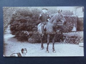 HORSE & GENTLEMAN with Colley Dog early 1900's RP Postcard