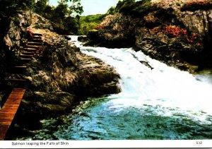 Scotland Invershin Falls Of Shin