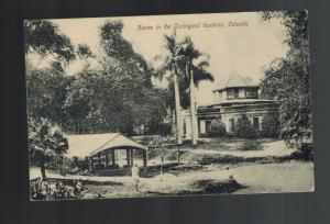 Mint Calcutta India BW RPPC Postcard Zoological Gardens
