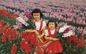 Arizona Young Girls With Local Flowers