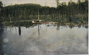 Alabama Fishing On One Of The Lakes Near Marion sk1755