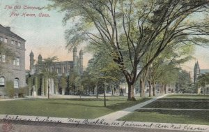 NEW HAVEN , Connecticut, 1938 ; Old Campus